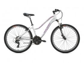 دوچرخه رالی مدل Raleigh Alpine-05 2021